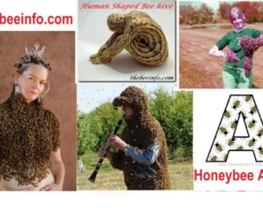 Honey Bee Art – Bee Magic – It's Fun To Play With Bees! (113)